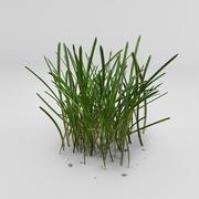 Long Grass 3d model