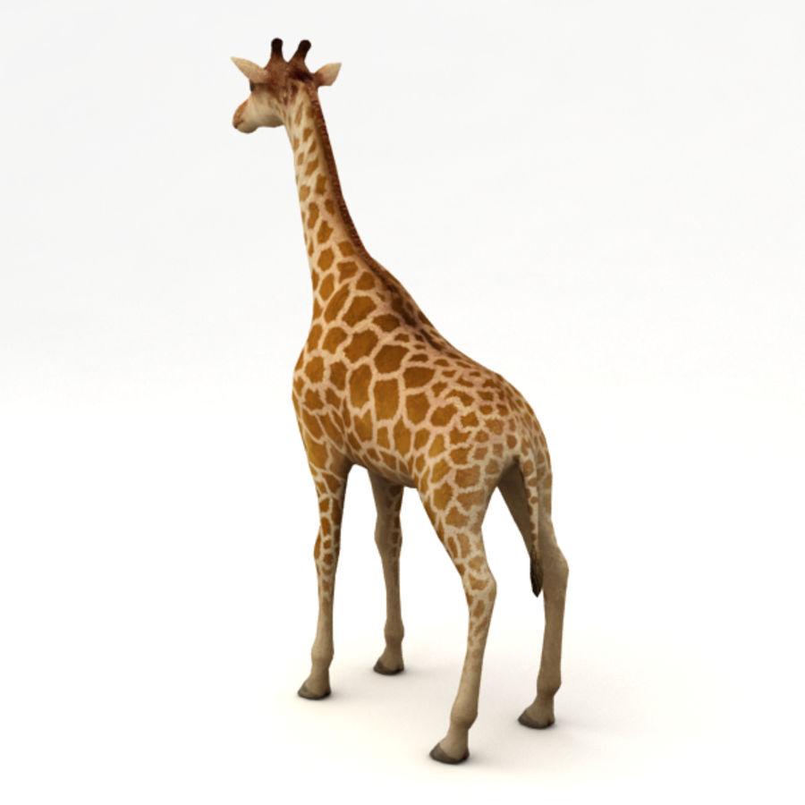 装备长颈鹿 royalty-free 3d model - Preview no. 3