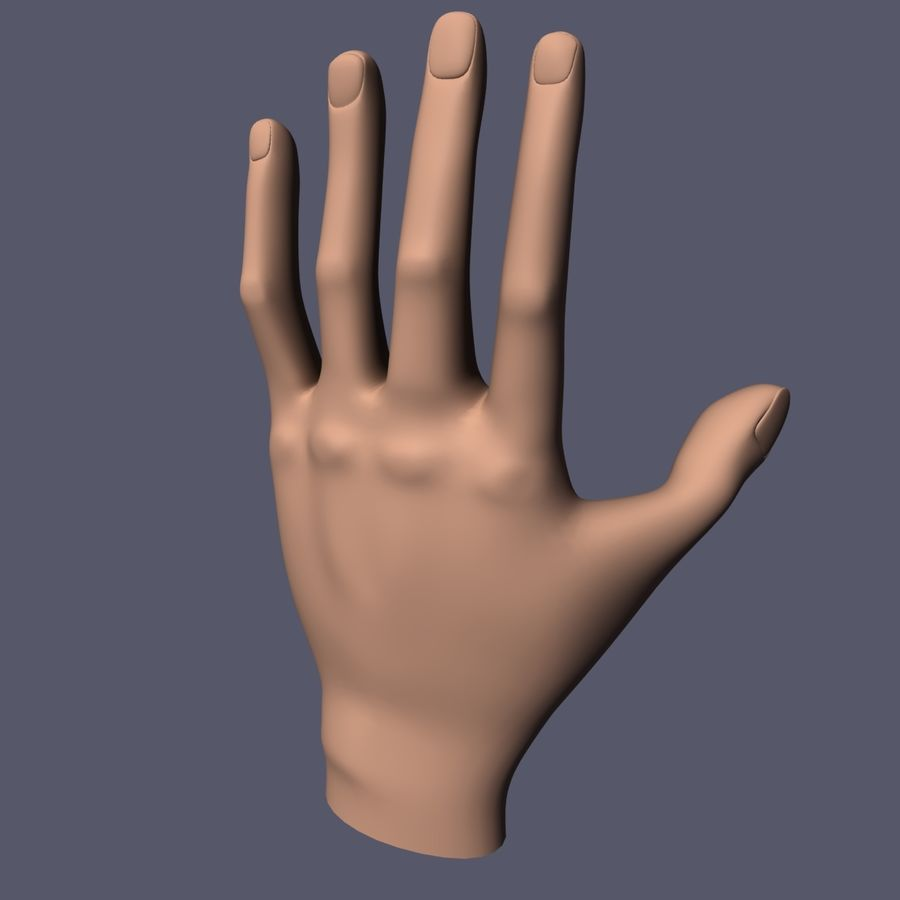 Hand Base UV Unwrapped royalty-free 3d model - Preview no. 2