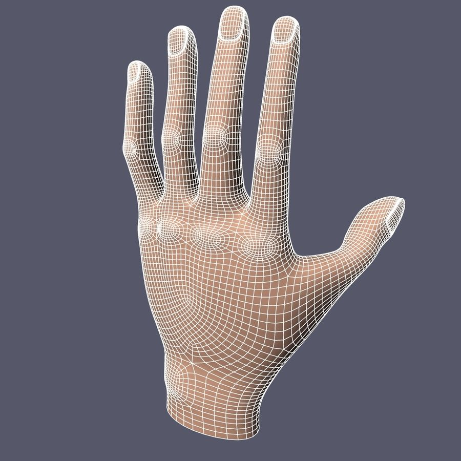 Hand Base UV Unwrapped royalty-free 3d model - Preview no. 11