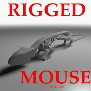 Rigged Mouse Skeleton 3d model