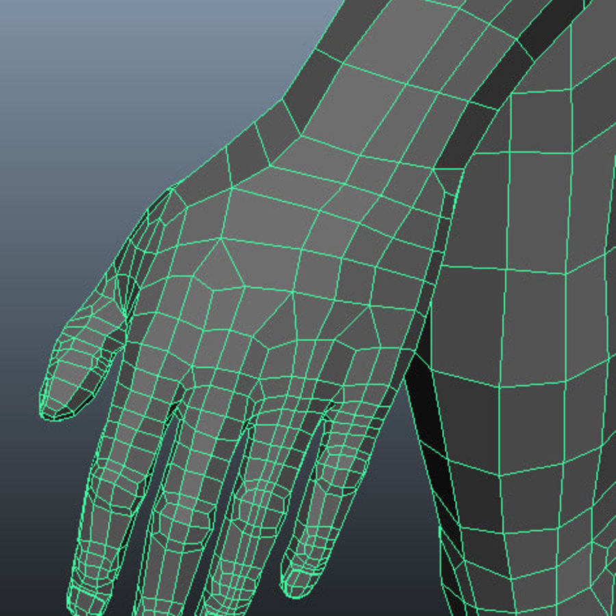Male Base Mesh royalty-free 3d model - Preview no. 6