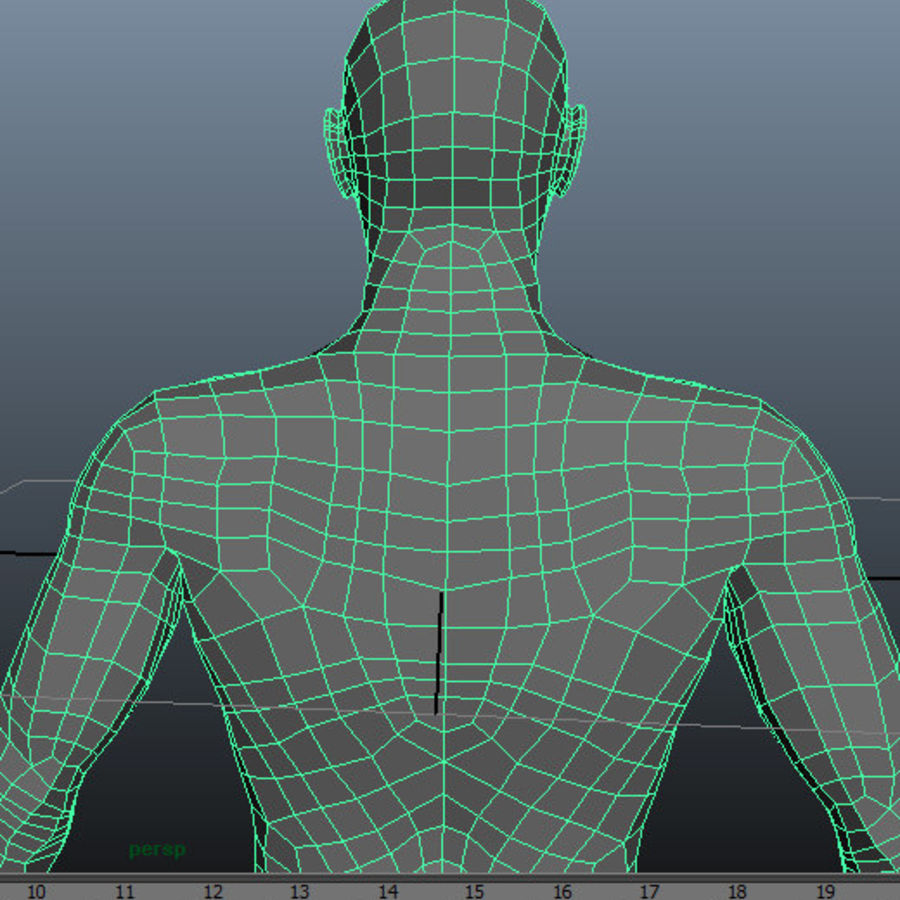 Male Base Mesh royalty-free 3d model - Preview no. 7