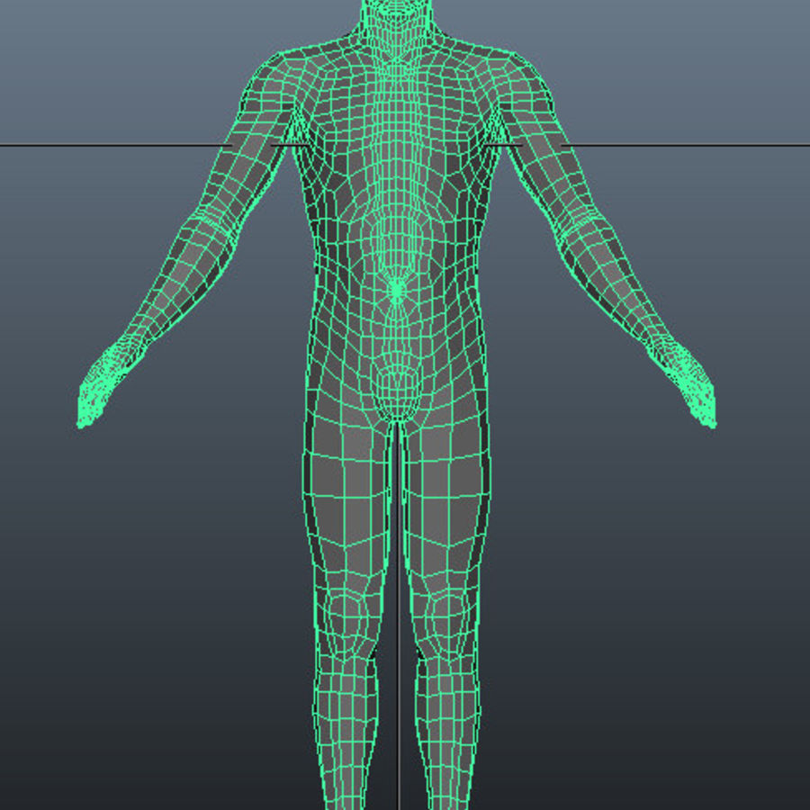 Male Base Mesh royalty-free 3d model - Preview no. 3