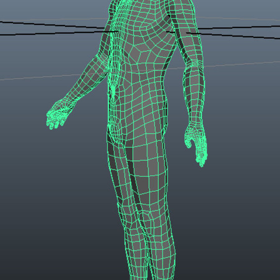 Male Base Mesh royalty-free 3d model - Preview no. 5