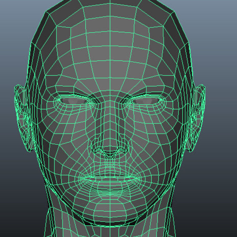 Male Base Mesh royalty-free 3d model - Preview no. 10