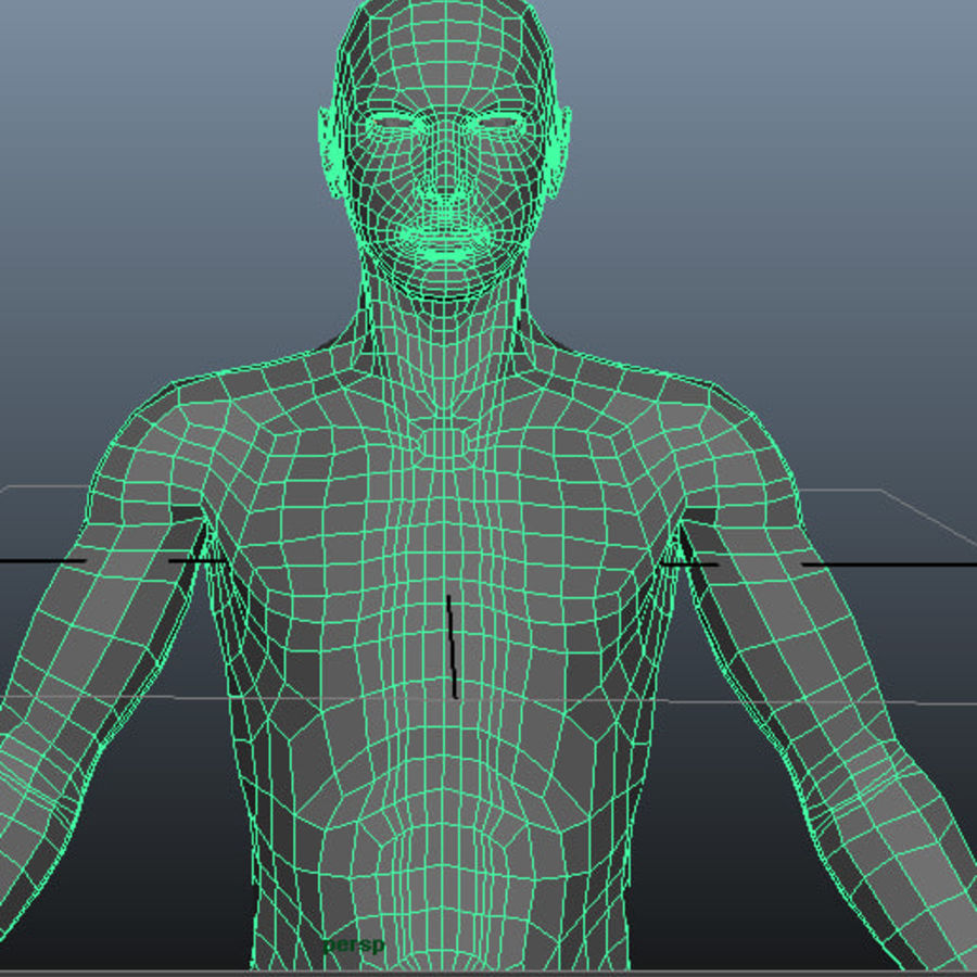 Male Base Mesh royalty-free 3d model - Preview no. 13