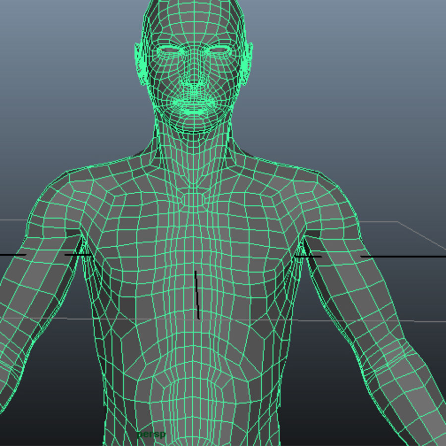Male Base Mesh royalty-free 3d model - Preview no. 15