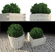 Outdoor Plants 3 3d model