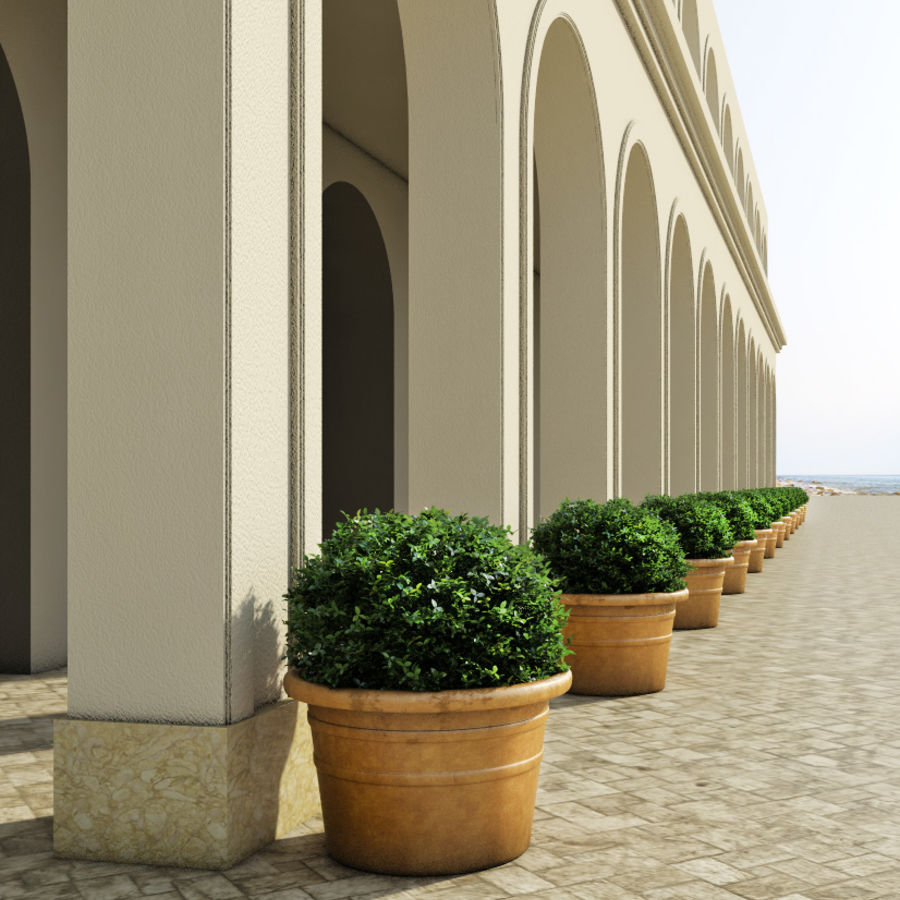 Bushes in pots 2 royalty-free 3d model - Preview no. 2