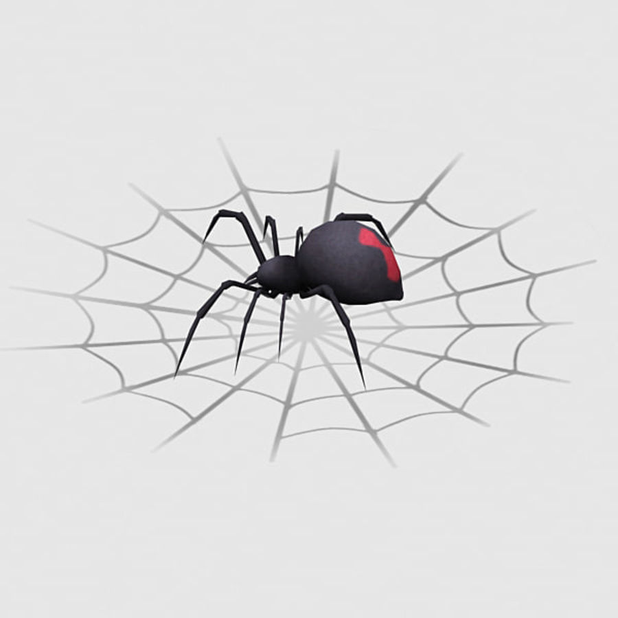 black widow spider royalty-free 3d model - Preview no. 5