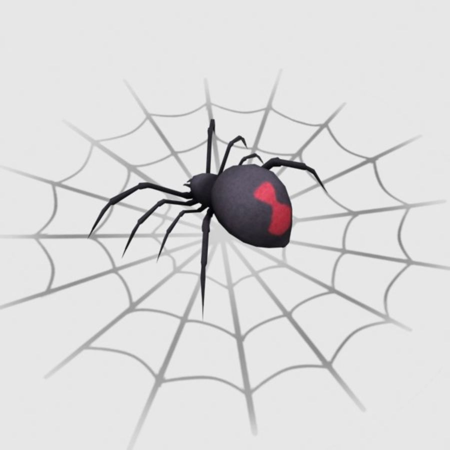 black widow spider royalty-free 3d model - Preview no. 3