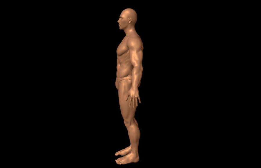 Sexy Male Body - Male Human Anatomy royalty-free 3d model - Preview no. 4