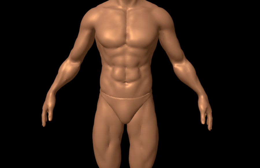 Sexy Male Body - Male Human Anatomy royalty-free 3d model - Preview no. 5