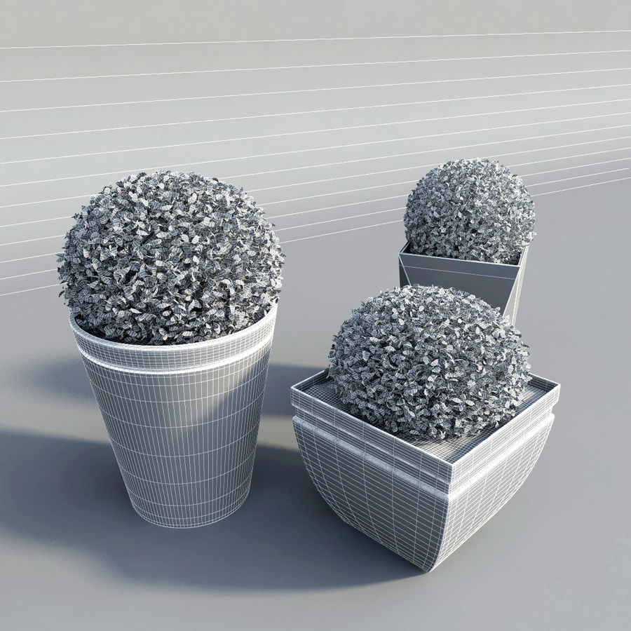 Shrubs in Pots royalty-free 3d model - Preview no. 7
