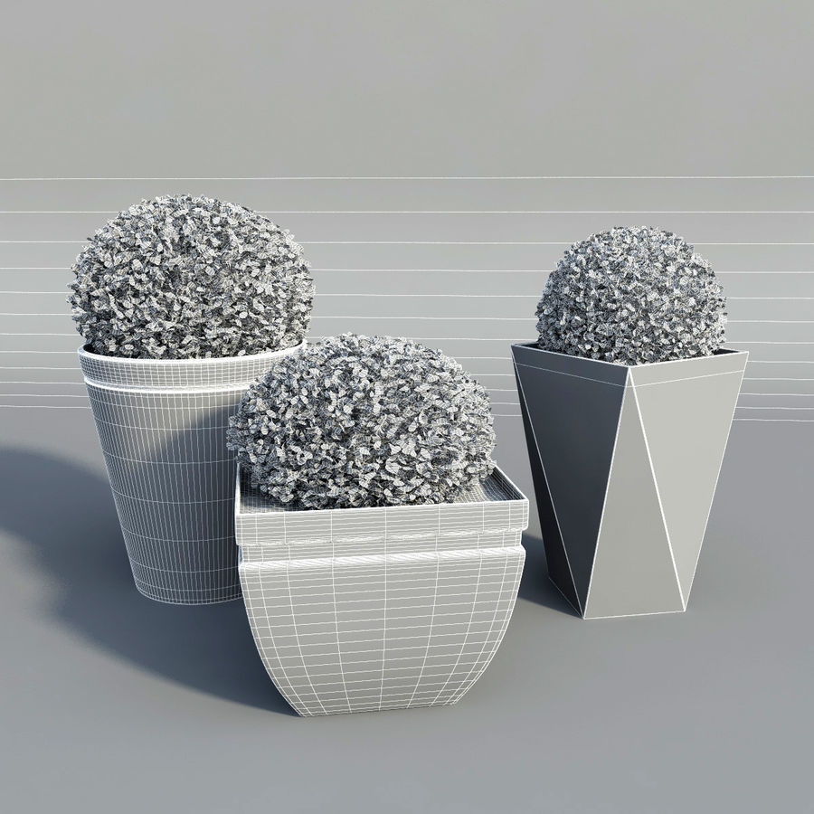 Shrubs in Pots royalty-free 3d model - Preview no. 6
