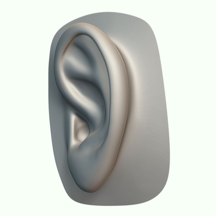 Ear royalty-free 3d model - Preview no. 4