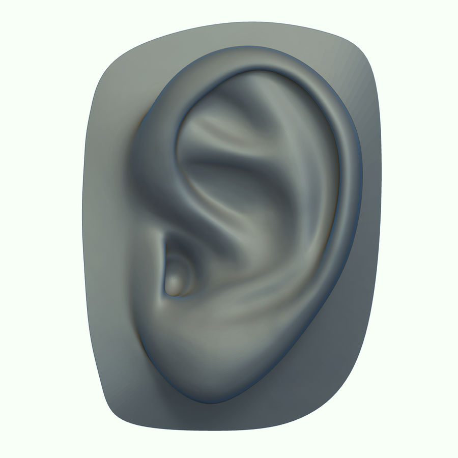 Ear royalty-free 3d model - Preview no. 2