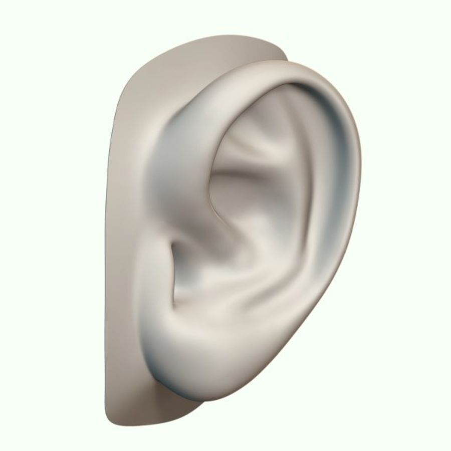 Ear royalty-free 3d model - Preview no. 1