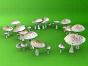 MUSHROOMS - Photo real 3d model