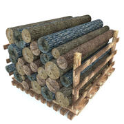 Log de madeira 3d model