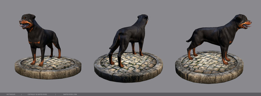Dog Rottweiler royalty-free 3d model - Preview no. 2