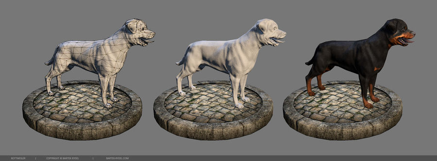 Dog Rottweiler royalty-free 3d model - Preview no. 3