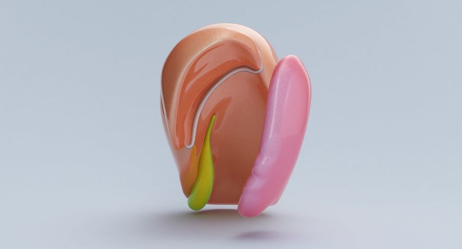 Foie royalty-free 3d model - Preview no. 11