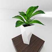 plant with vase 3d model