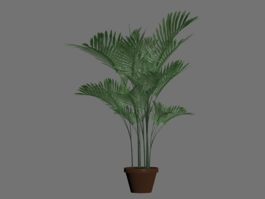 Topf mit Palme royalty-free 3d model - Preview no. 1