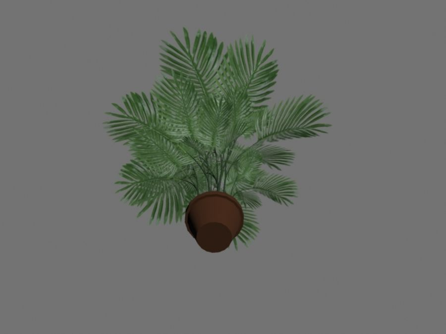 Topf mit Palme royalty-free 3d model - Preview no. 5