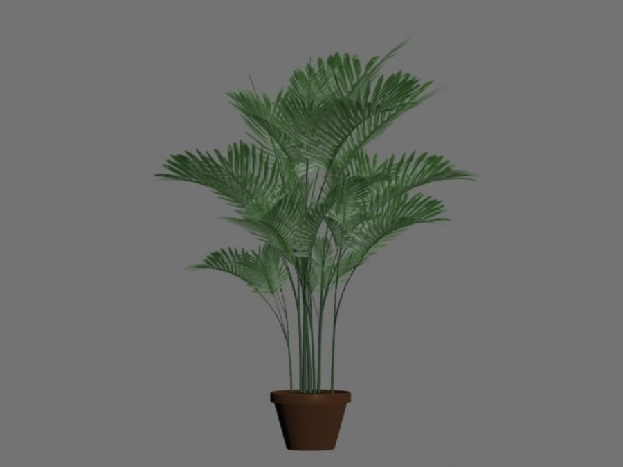Topf mit Palme royalty-free 3d model - Preview no. 2