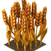 Barley cartoon (stages of grow) 3d model