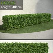 Hedge 2 3d model