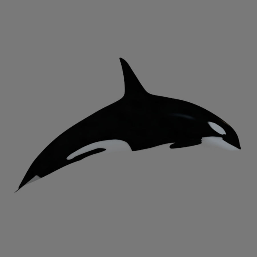 orca royalty-free 3d model - Preview no. 1
