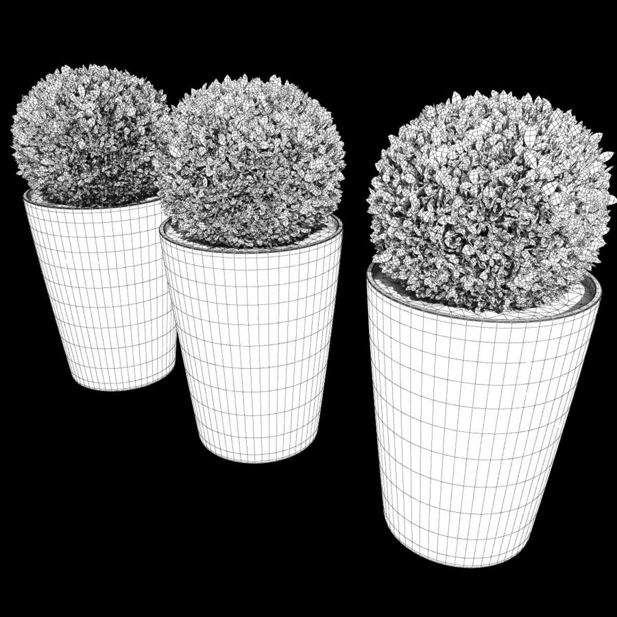 Shrubs in Pots 7 royalty-free 3d model - Preview no. 7