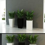 Contemporary Plants mini 3d model