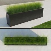 Modern Grass 3d model