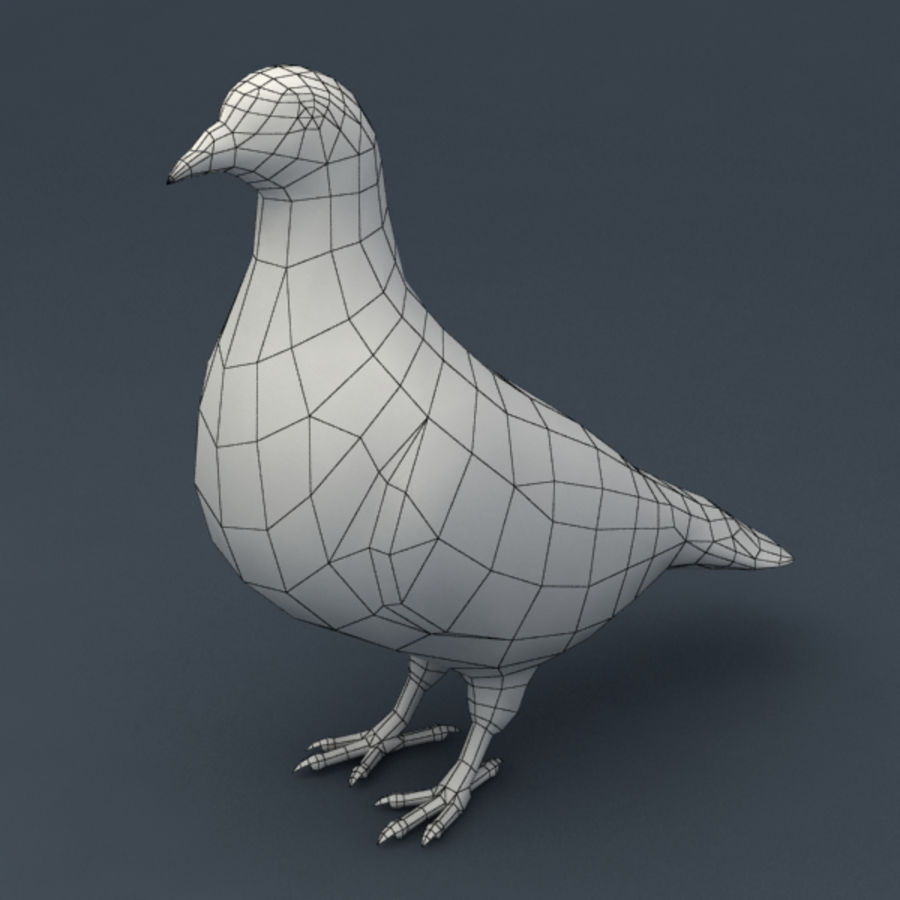 Pigeon rigged royalty-free 3d model - Preview no. 7