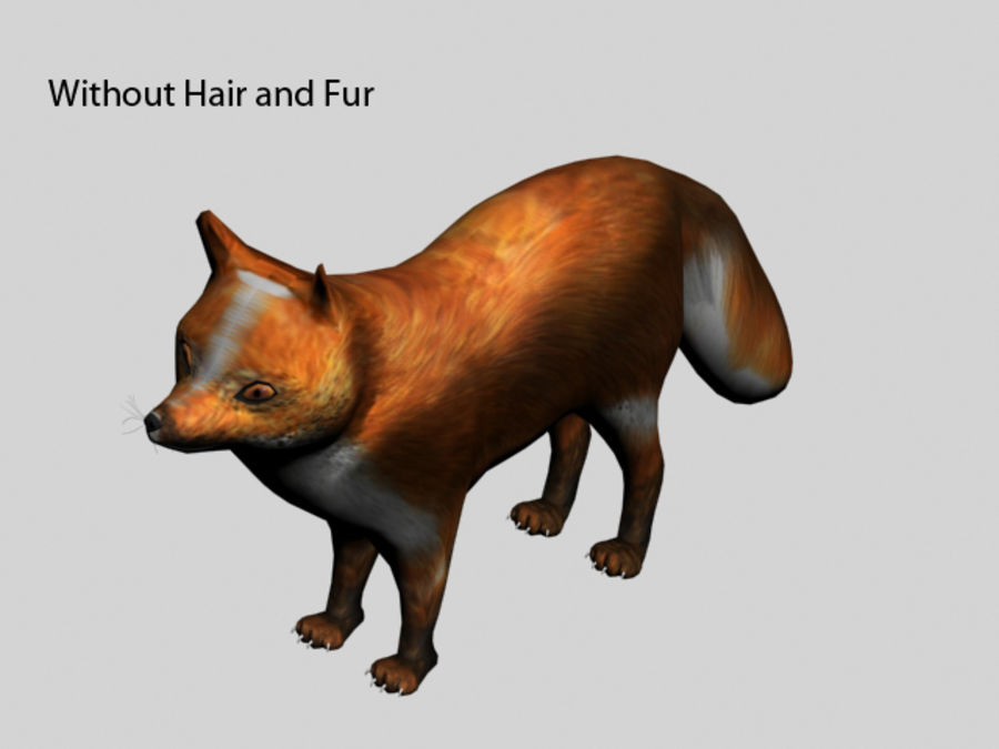 Fuchs royalty-free 3d model - Preview no. 9