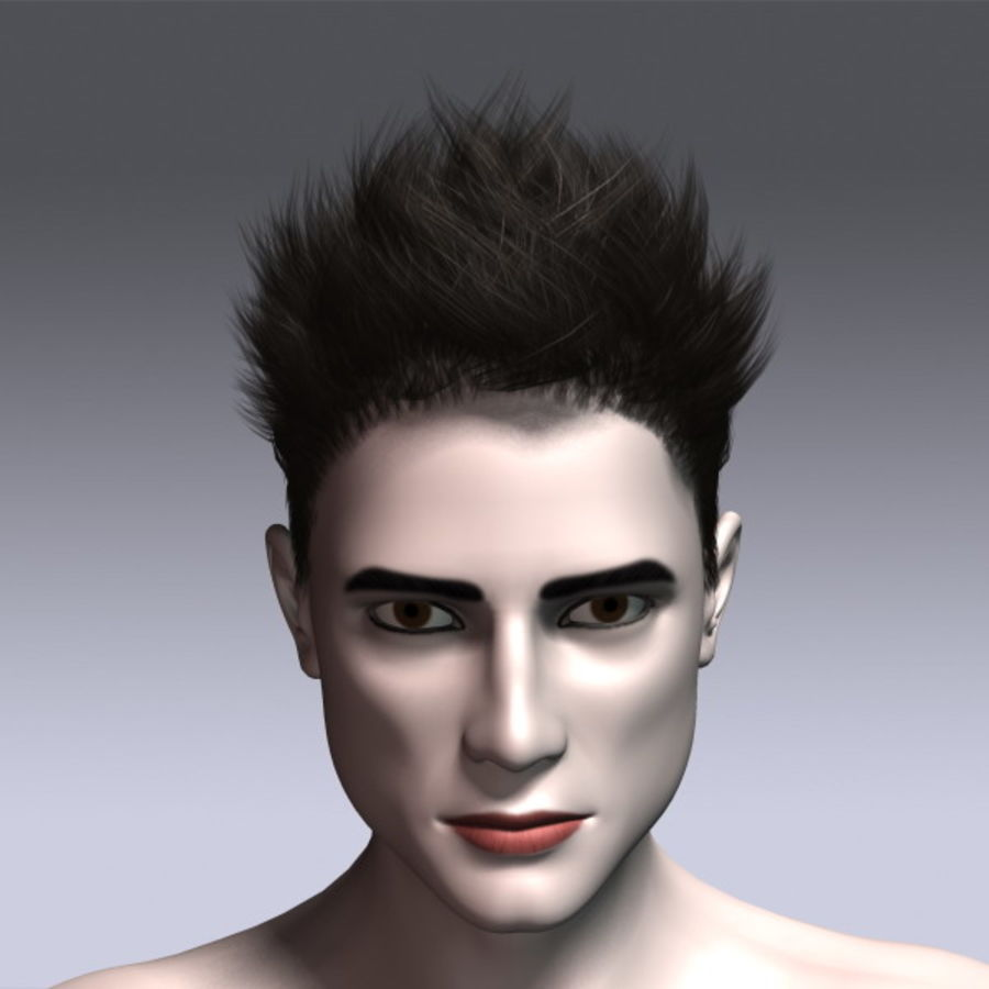 Daniel Hair royalty-free 3d model - Preview no. 4