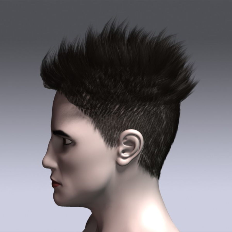 Daniel Hair royalty-free 3d model - Preview no. 10