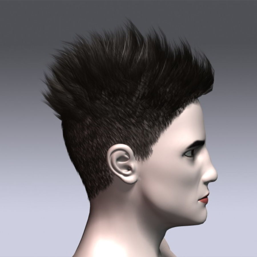 Daniel Hair royalty-free 3d model - Preview no. 6