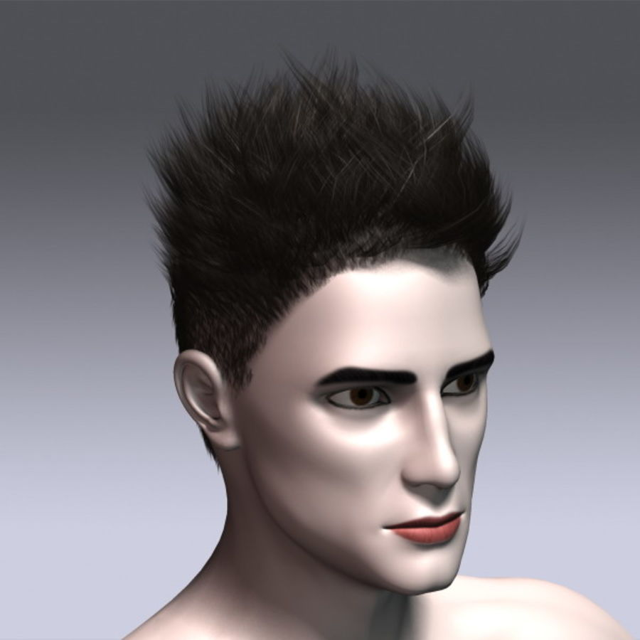 Daniel Hair royalty-free 3d model - Preview no. 5