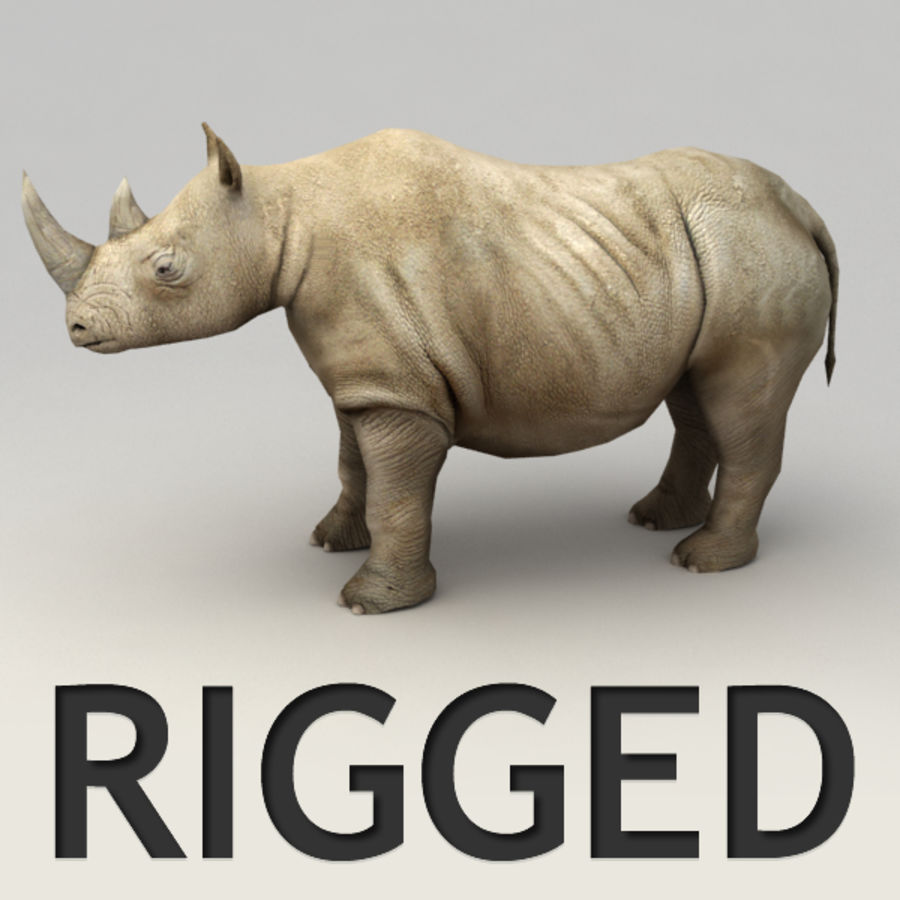 Rhino rigged model royalty-free 3d model - Preview no. 1