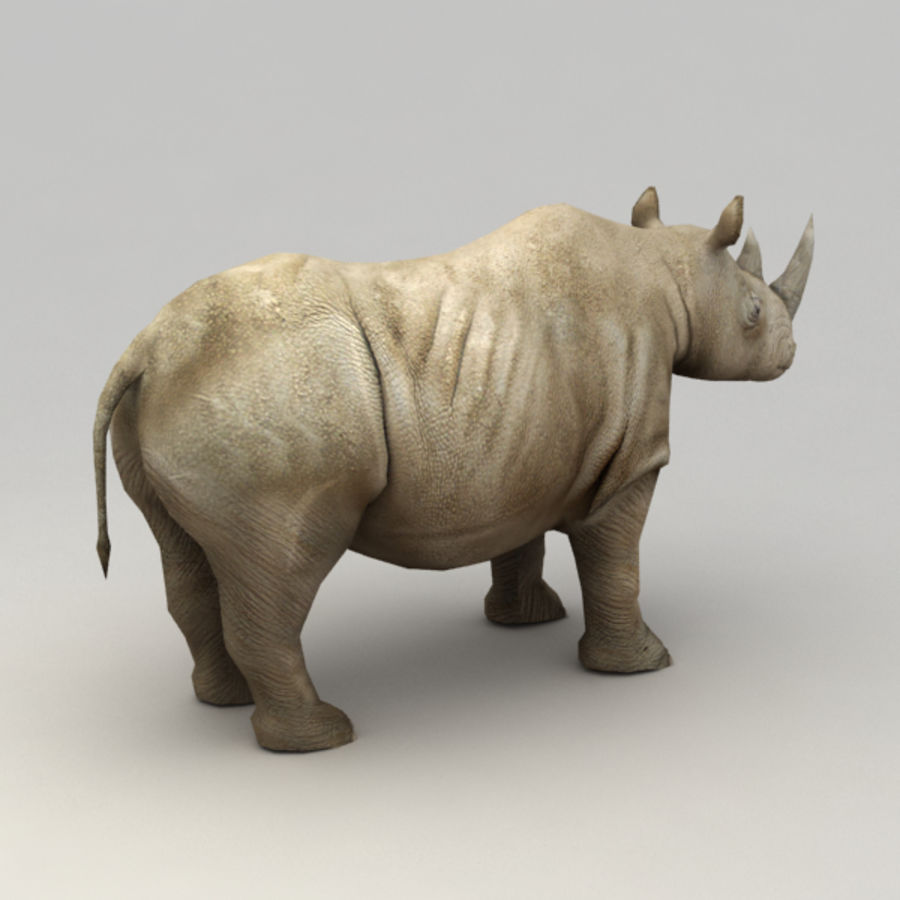 Rhino rigged model royalty-free 3d model - Preview no. 3
