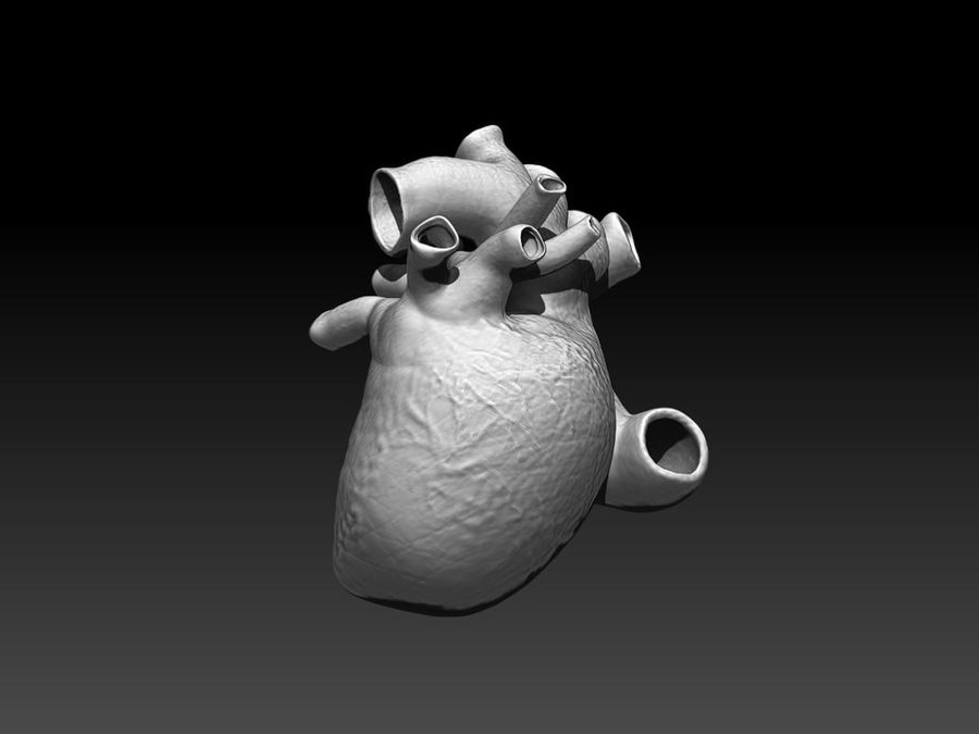 HEART royalty-free 3d model - Preview no. 4