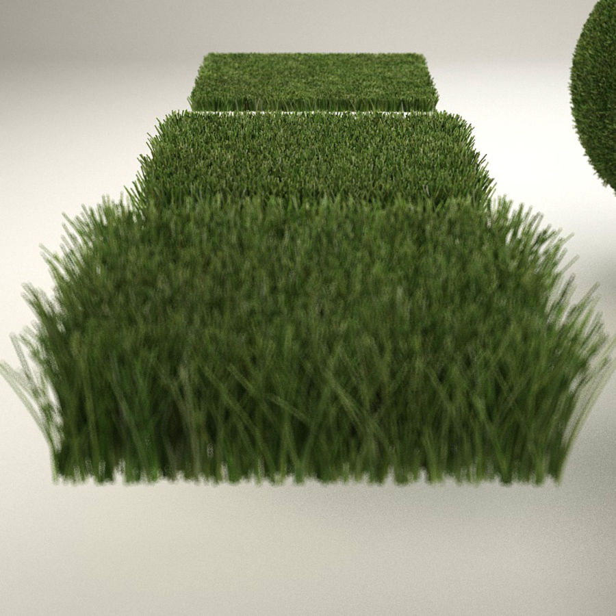 C4D realistic grass royalty-free 3d model - Preview no. 4