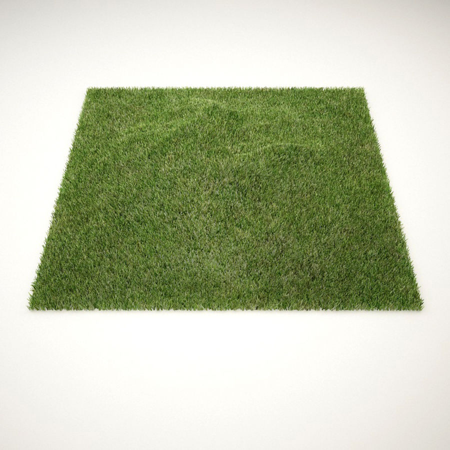 C4D realistic grass royalty-free 3d model - Preview no. 1