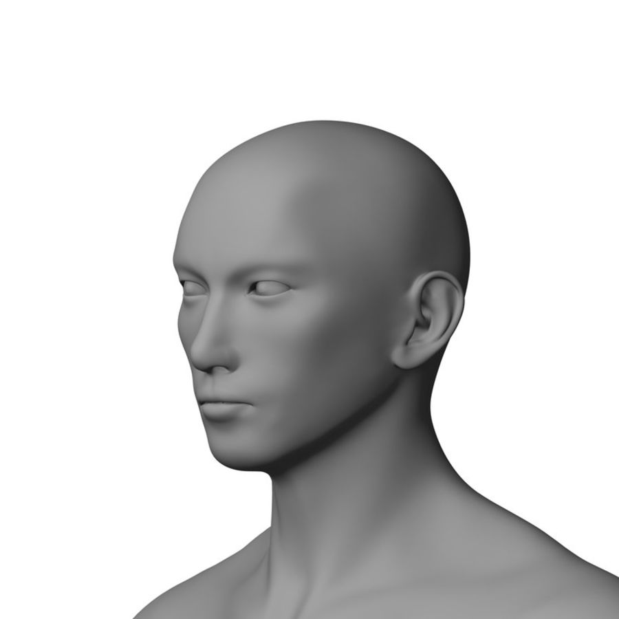 Human Male Base Mesh royalty-free 3d model - Preview no. 6
